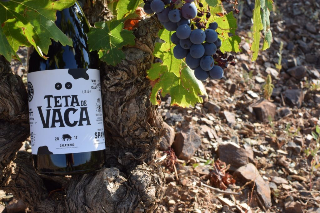 In de Spaanse wijnbox zit onder andere de wijn Teta de Vaca. Deze lokale druif vanuit Catalayud heeft zijn naam te danken aan de vorm van de druiventros. Deze loopt namelijk in een ovale vorm en lijkt daarmee op een koeienuier. Hoe deze wijn smaakt? Bestel onze wijnbox en proef het zelf.