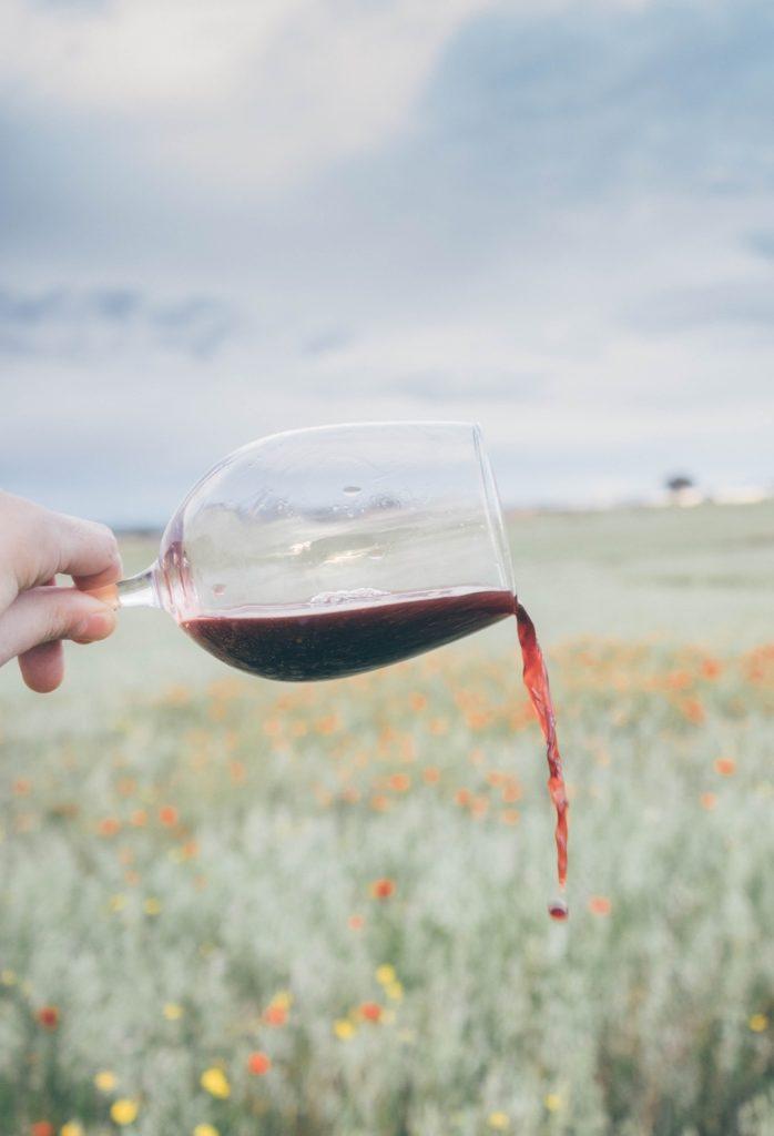 Natuurlijk mag er in een Spaanse wijnbox een Tempranillo vanuit de beroemde regio Rioja niet ontbreken. Wij van VIQH aan Huis hebben gekozen voor een Crianza. 12 maanden houtrijping en 12 maanden in de fles.