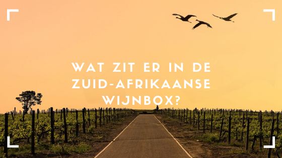 Wijnbox Zuid-Afrikaanse wijnen. Welke wijnen zitten daarin? Lees het hier viqh aan huis. wijnproeverijen op locatie