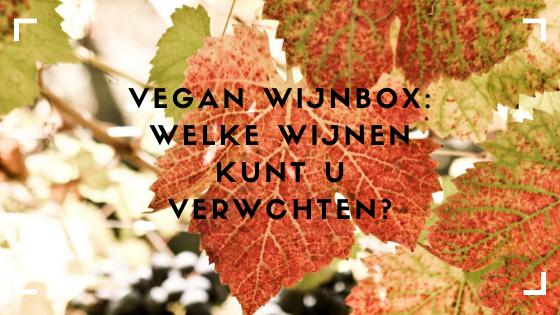Vegan wijnen komen steeds vaker voor, maar wat kunt u nou verwachten? VIQH aan Huis heeft een vegan wijnbox samengesteld. Deze wijnen zijn uitstekend te combineren met de verfijnde gerechten van het eerste veganistische restaurant van Haarlem New Vegas.
