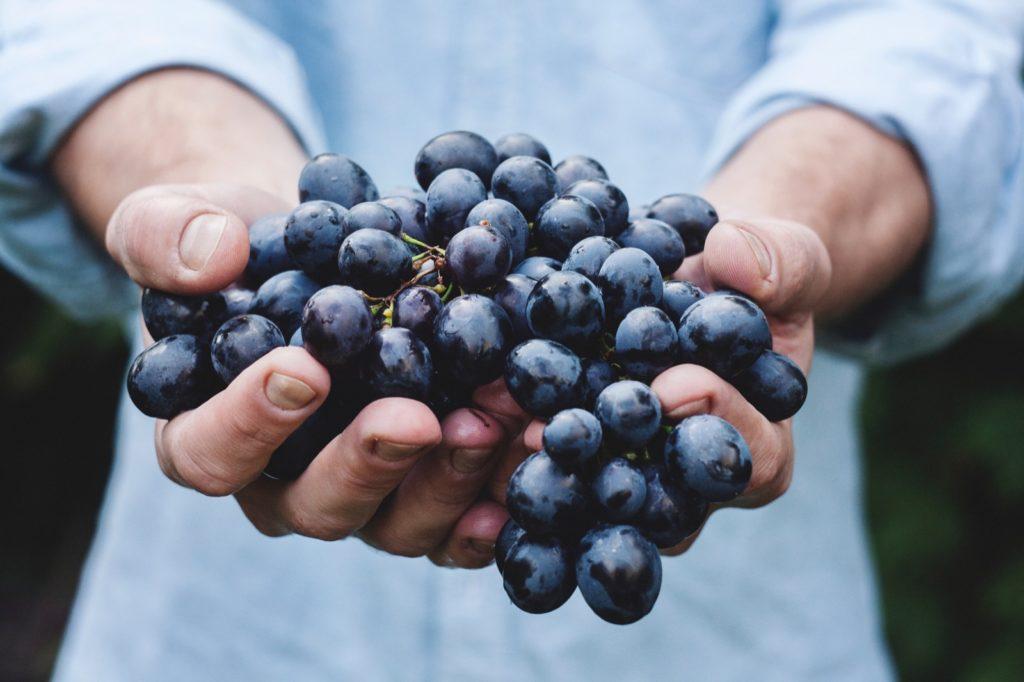Welke druif hoopt u dat wij proeven tijdens de battle tussen de oude wijnwereld en de nieuwe wijnwereld?