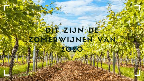 Van welke wijn geniet u nou in de zomer? Wij van wijnbar VIQH aan Huis hebben een wijnbox samengesteld met 6 verschillende zomerwijnen. Geniet van de zomer met deze mooie wijnselectie. Dit is ook het ultieme wijncadeau voor de liefhebber