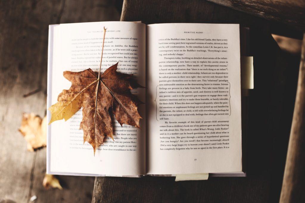 Met de wijnbox herfstwijnen kunt u optimaal genieten van het herfstweer. De Torrontés is zeer geschikt tijdens het lezen van een goed boek.