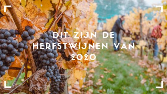 Van welke wijn geniet u het liefst tijdens de gure herfstdagen? VIQH aan Huis heeft voor u een wijnbox samengesteld vol met diverse herfstwijnen en najaarswijen maar ook wijnen die perfect aansluiten bij het wildseizoen.