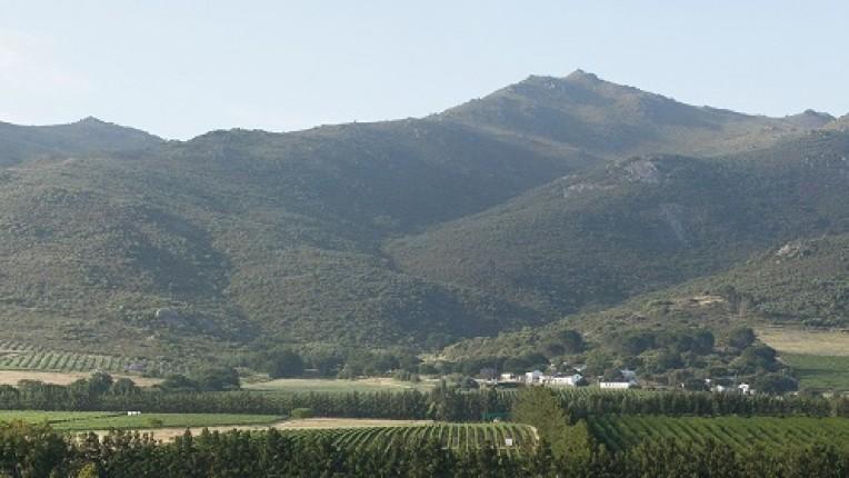 Steun de Zuid-Afrikaanse wijnbouw. Onder andere met een Pinotage van Ayama. Deze Italiaanse wijnfamilie maakt wijn in het prachtige Zuid-Afrika